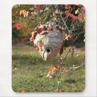 A BEAUTIFUL NEST by SHARON SHARPE Mouse Pad