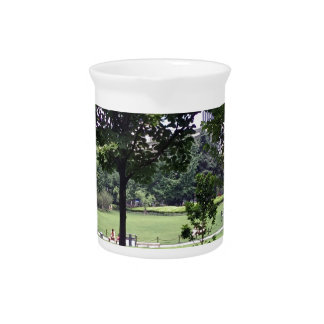 A beautiful park view drink pitcher