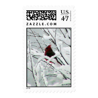A Beautiful Red Cardinal In The Bushes Covered Wit Stamp