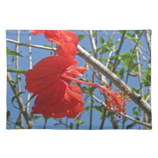 A beautiful red Hibiscus flower Place Mat