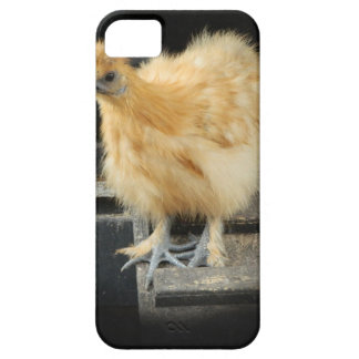 a beautiful Silkie Bantam Chicken picture. iPhone SE/5/5s Case