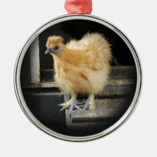 a beautiful Silkie Bantam Chicken picture. Round Metal Christmas Ornament