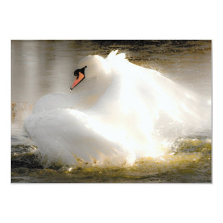 A Beautiful Swan Invitation