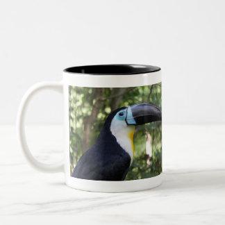 A Beautiful Toucan Photo Coffee Mugs