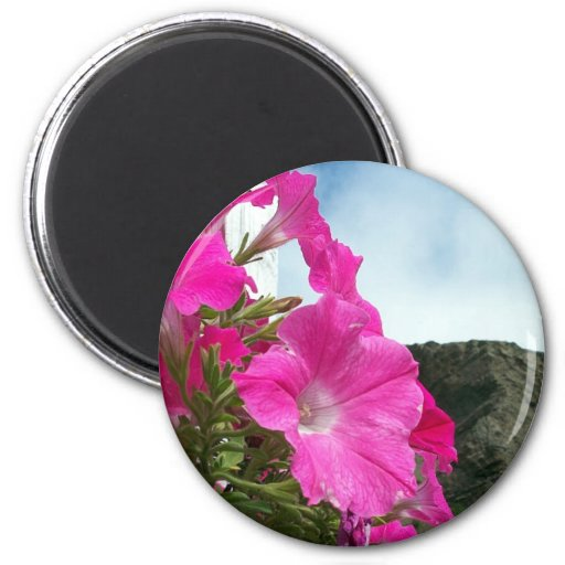A Beautiful View Magnet