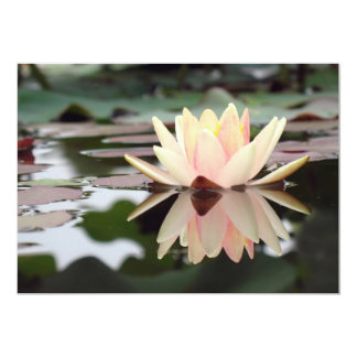A Beautiful  Water Lily in a Pond 5x7 Paper Invitation Card