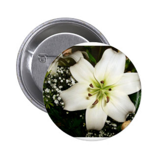 A beautiful white flower close up button