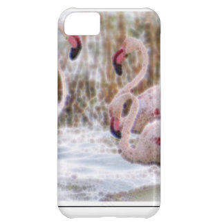 A Beautiful World Case For iPhone 5C