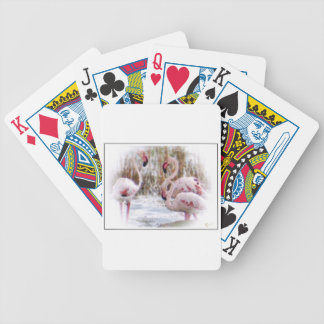 A Beautiful World Card Decks