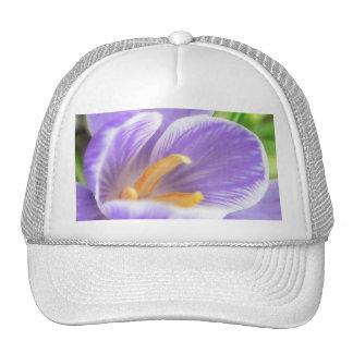 A Bee's Eye View - Crocus Mesh Hats
