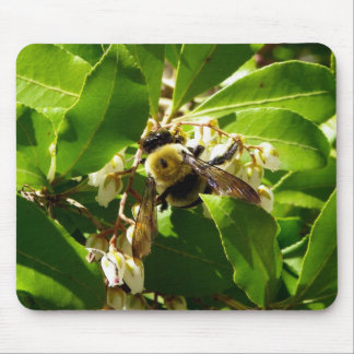 A Bees Texture Mouse Pad
