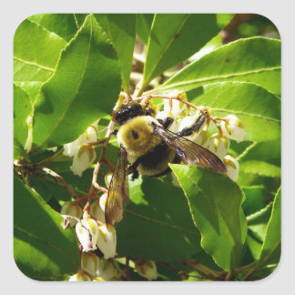 A Bees Texture Square Sticker
