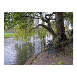 A bench by the river Cam Postcard