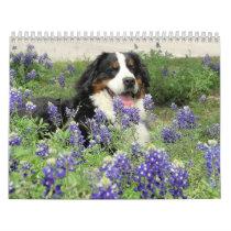 A Berner Year Calendar
