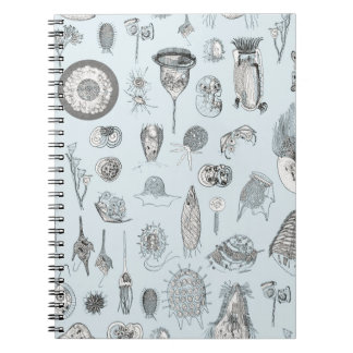 A bestiary of Protozoa Spiral Note Books