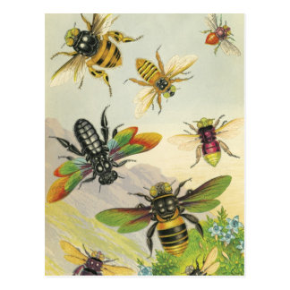 A Bevy of Beautiful Bees Postcards