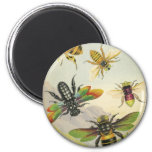 A Bevy of Beautiful Bees Refrigerator Magnet