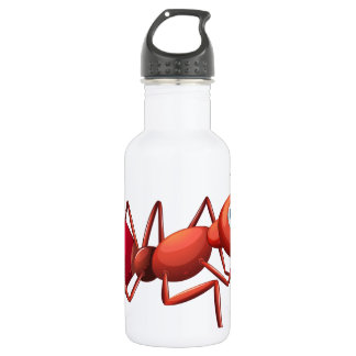 A big ant crawling 18oz water bottle