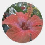 A Big Pink Flower Classic Round Sticker