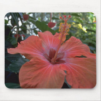 A Big Pink Flower Mouse Pad