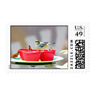 A Bird And Butterflies In Red Cups Stamp