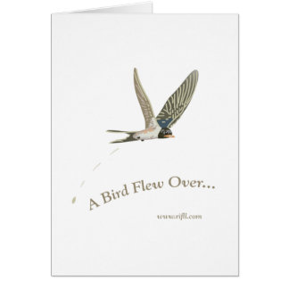 A-Bird-Flew-Over Card
