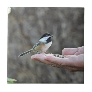 A Bird in the Hand Ceramic Tile