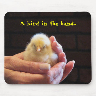 A bird in the hand... mouse pad