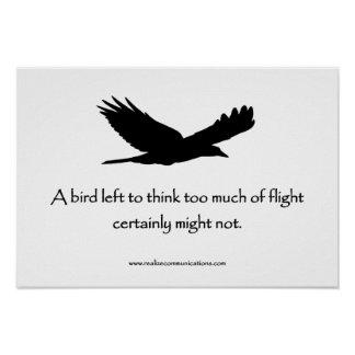 A Bird Left to Think POSTER