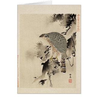 A bird-of-prey card