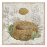 A Bird's Nest with a Brown Egg Poster