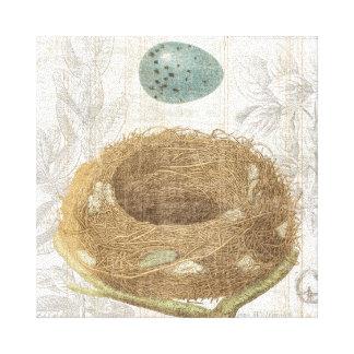 A Bird's Nest with a Decorative Egg Canvas Print
