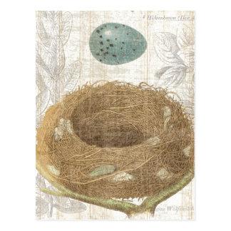 A Bird's Nest with a Decorative Egg Postcard