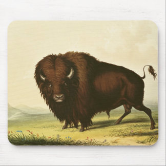 A Bison, c.1832 Mouse Pad
