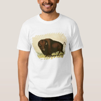 A Bison, c.1832 T Shirts