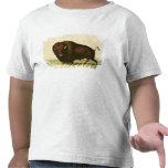 A Bison, c.1832 Tee Shirts