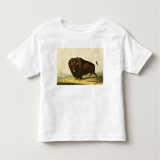 A Bison, c.1832 Tee Shirts