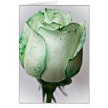 A bit of Irish in a Rose Cards
