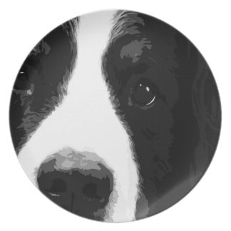 A black and white Bernese mountain dog Melamine Plate
