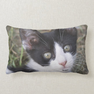 A black and white cat kitten in the garden. throw pillows