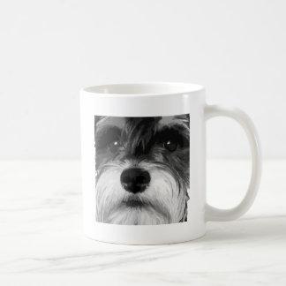 A black and white Miniature Schnauzer Coffee Mug