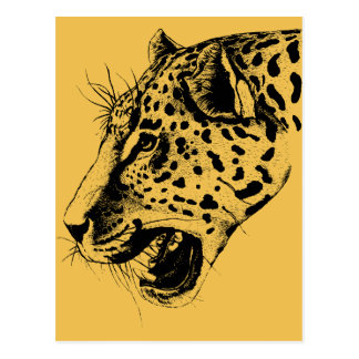 A Black and Yellow Hand Drawn Leopard Illustration Postcard