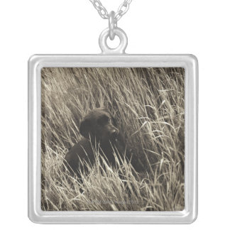 A black puppy in a meadow. silver plated necklace