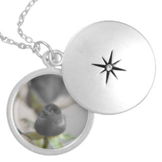 A black rose for your sweetheart... round locket necklace