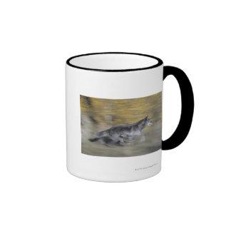 A black wolf on the run ringer mug