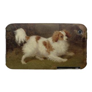 A Blenheim Spaniel, c.1820-30 (oil on canvas) iPhone 3 Cases