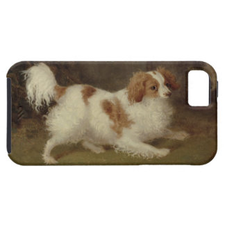 A Blenheim Spaniel, c.1820-30 (oil on canvas) iPhone 5 Cases