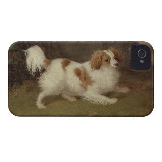 A Blenheim Spaniel, c.1820-30 (oil on canvas) Case-Mate iPhone 4 Case