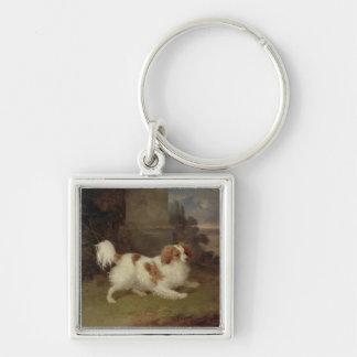 A Blenheim Spaniel, c.1820-30 (oil on canvas) Keychains