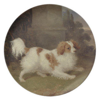 A Blenheim Spaniel c 1820-30 oil on canvas Dinner Plates